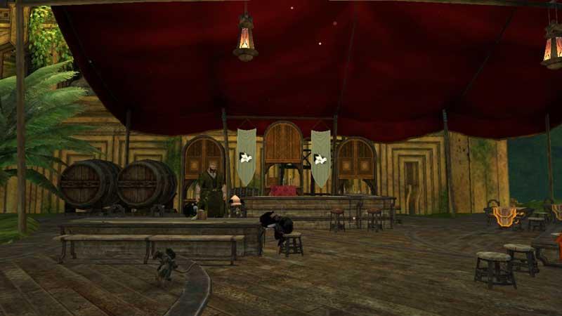 WorldOfBoardCraft-ABitMuchToDrink-GW2-Tavern